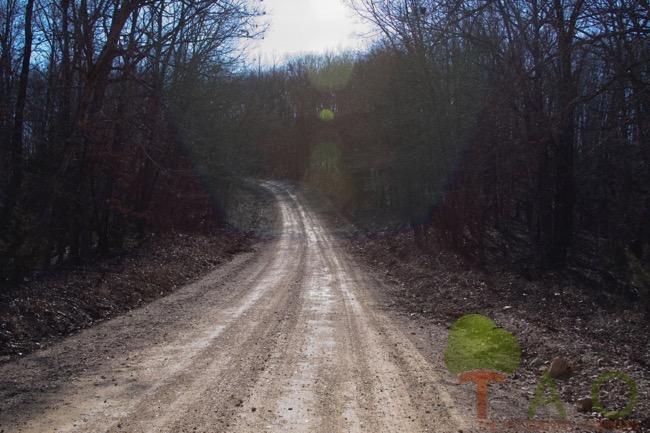 Coon-Hill-Knob-Road
