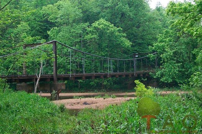 Miller Creek swinging bridge