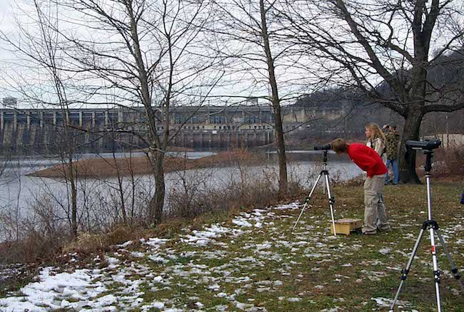Eagle spotters at Lake  of the Ozarks