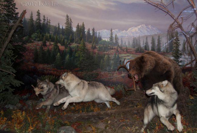 national parks dioramas WOW