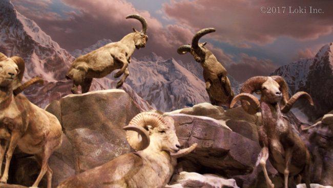 sheep museum WOW