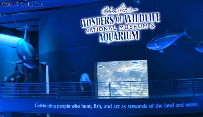 entrance to WOW aquarium Johnn Morris