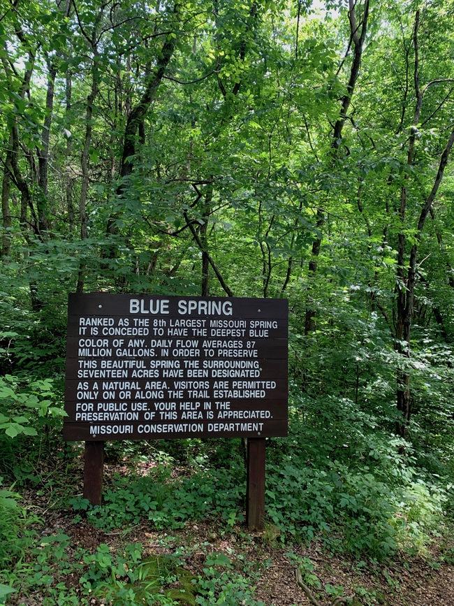 Blue Spring sign