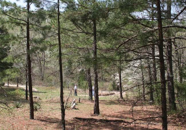 ozark cemetery rural