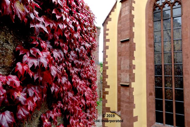 red leaves Wertheim