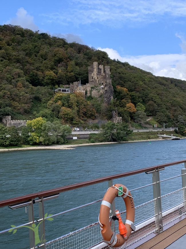 castle on viking river cruise
