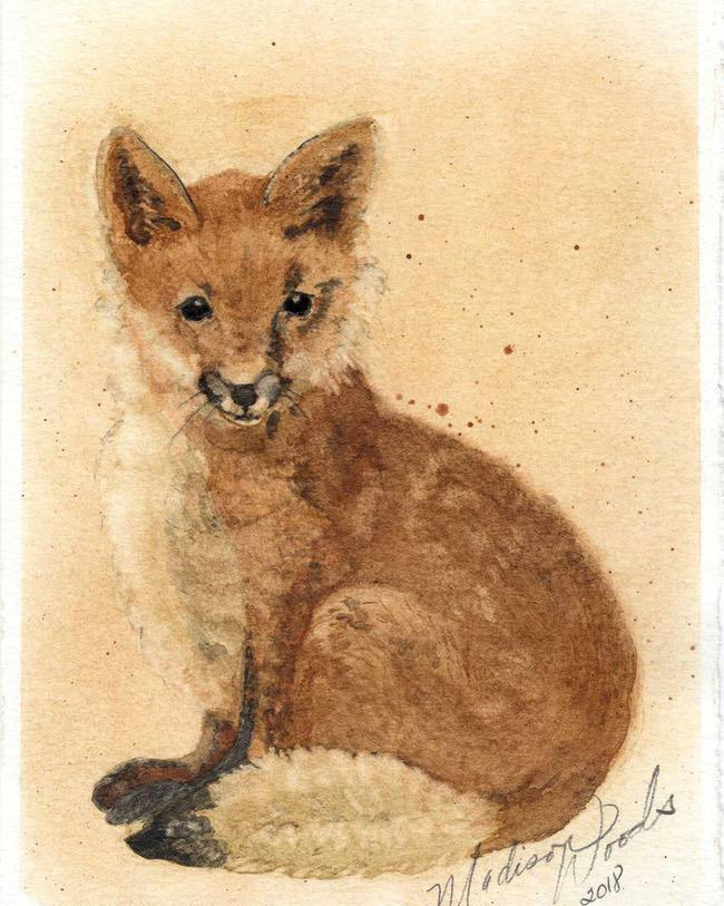 fox painting by Madison Woods