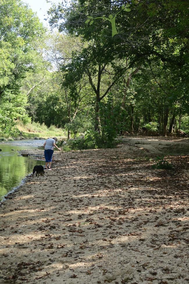 Rita and Scamps Hunter Creek
