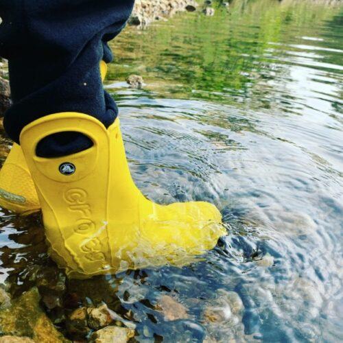 crocs in creek
