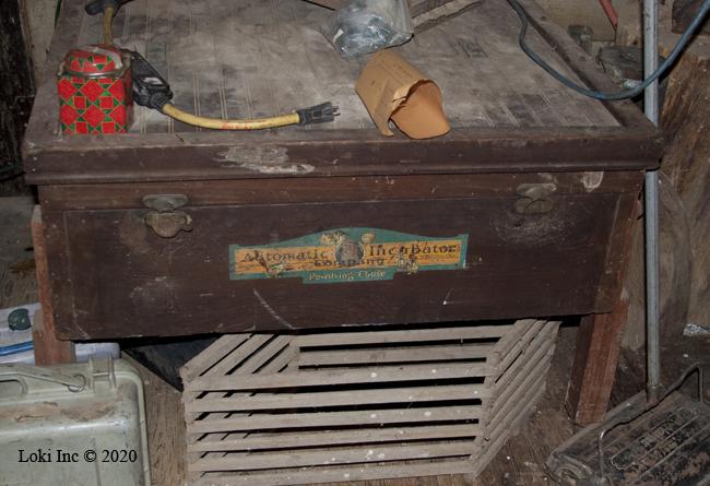 chicken heated water Incubator 1950s