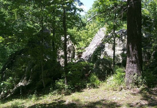 A Hike at Lane Spring Recreation Area