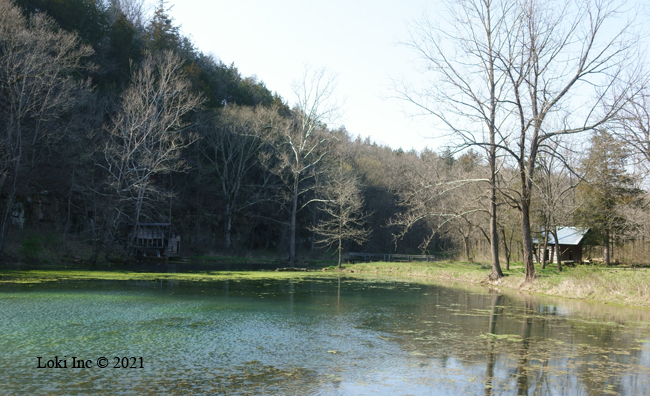 Thomas Brown's house, mill pond and mill at Falling Spring